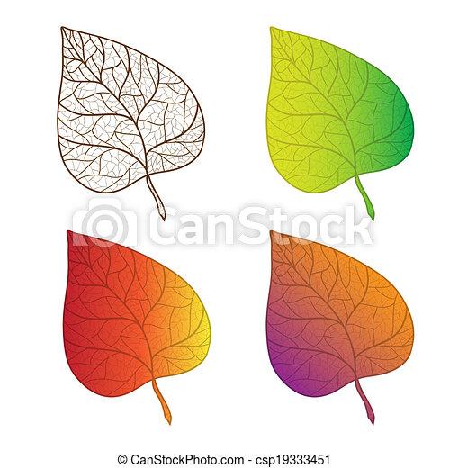 Coleccionar hojas de otoño coloridas aisladas. - csp19333451