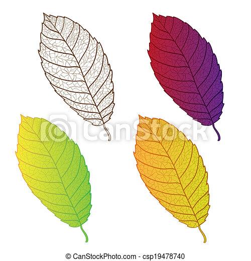 Coleccionar hojas de otoño coloridas aisladas. - csp19478740