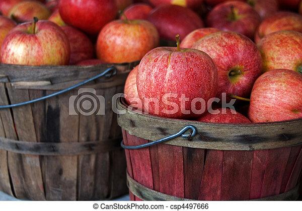otoño, manzanas - csp4497666