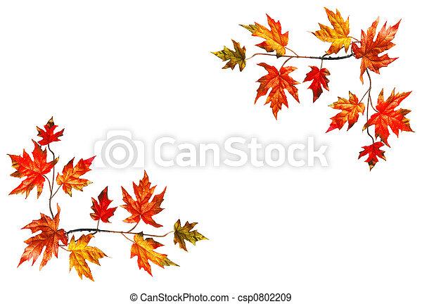 otoño, marco - csp0802209
