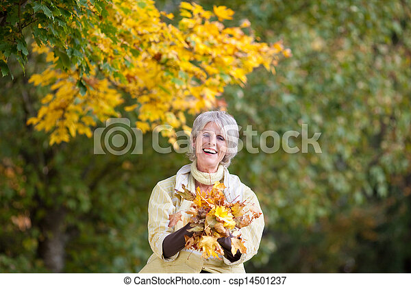otoño, mujer mayor, hojas, tenencia - csp14501237