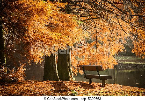Otoño, paisaje., hermoso, bosque, colorido imagen de archivo ...
