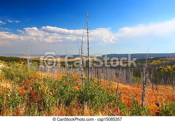 otoño, paisaje, montana - csp15085357