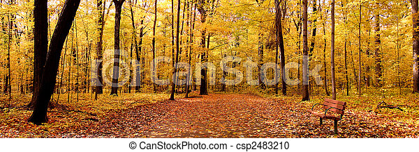 Un panorama de otoño - csp2483210