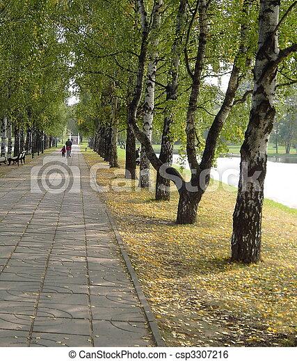 El parque en otoño - csp3307216