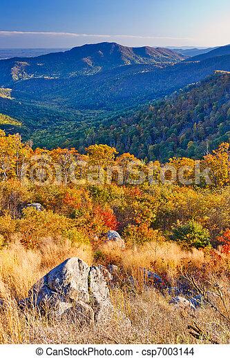 Otoño en el parque nacional Shenandoah - csp7003144