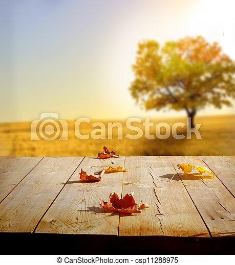 Un fondo de otoño - csp11288975