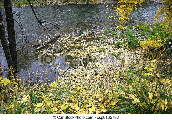 Otoño en el río - csp0165738
