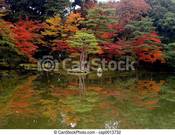 otoño, reflexión - csp0013732
