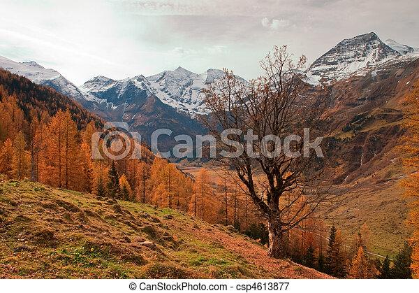 otoño - csp4613877