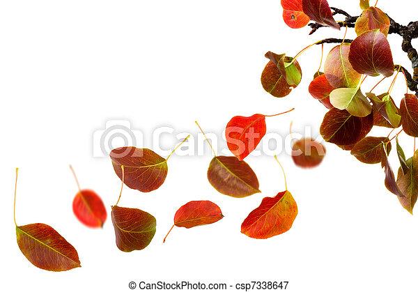 otoño sale, caer - csp7338647