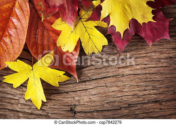 otoño sale - csp7842279