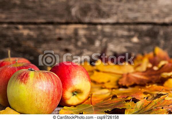 El otoño bordea las manzanas y las hojas de arce - csp9726158