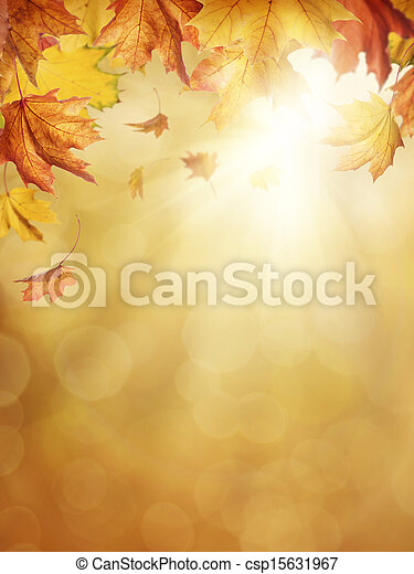Hojas de otoño - csp15631967
