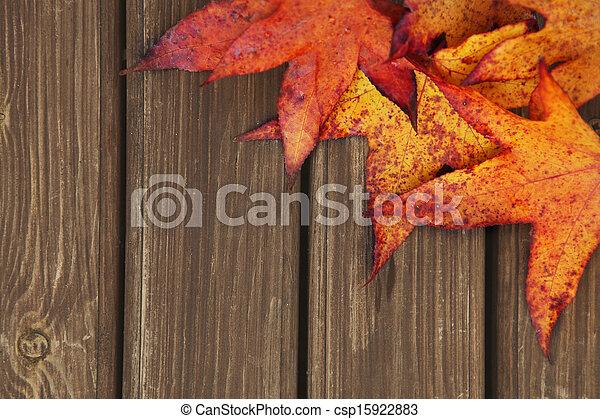 Trasfondo de otoño con hojas de arce - csp15922883