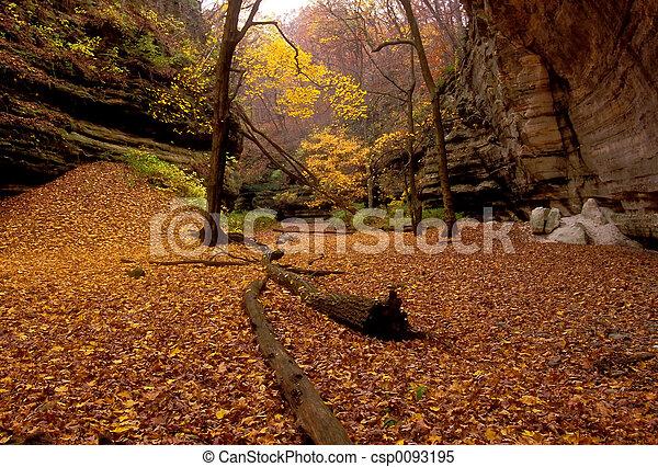 Silencio de otoño - csp0093195