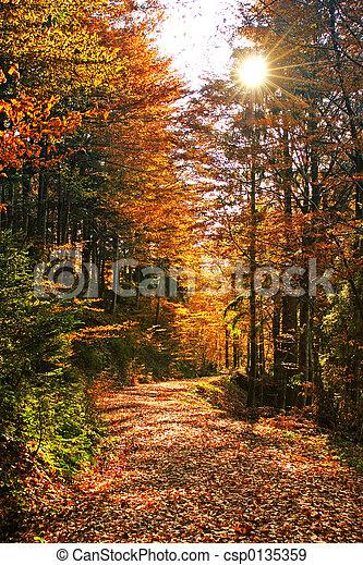 otoños - csp0135359