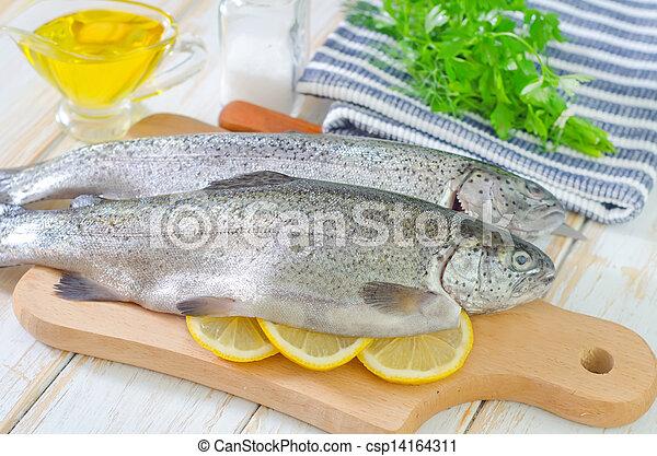 otrzyjcie skórę rybę - csp14164311