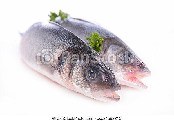 otrzyjcie skórę rybę - csp24592215
