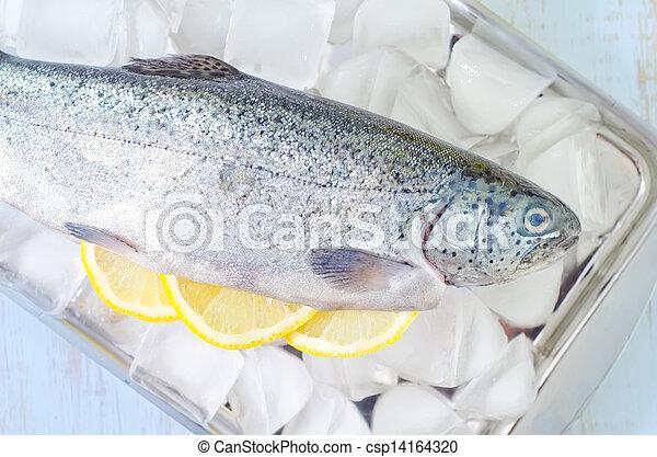 otrzyjcie skórę rybę - csp14164320