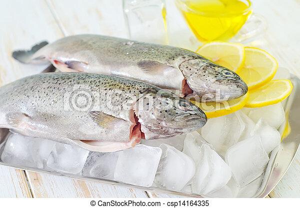 otrzyjcie skórę rybę - csp14164335