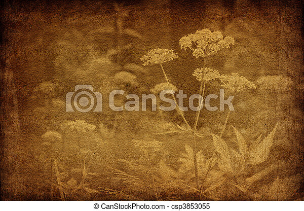 ouderwetse , abstract, bloemen, achtergronden, bos - csp3853055
