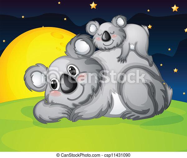 ours, reposer, deux - csp11431090