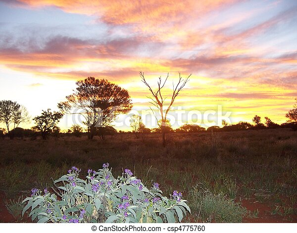 Outback Sunset - csp4775760