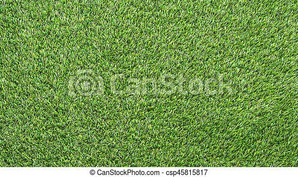 grass field background. Outdoor Green Grass Field Background For Mockup - Csp45815817