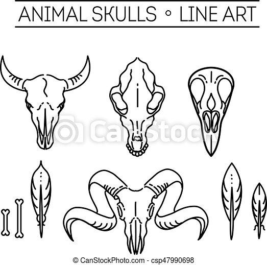 outline icon skull animals vector icon skull animals heads