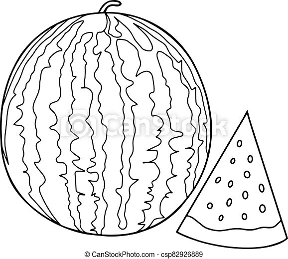 Outline Vector Drawing Of A Watermelon And Slices Of Watermelon Next Coloring With Watermelon Canstock
