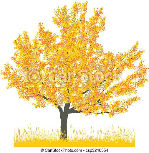 outono, árvore cereja - csp3240554