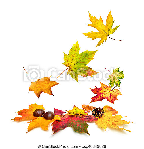 outono, baixo, folhas, queda, coloridos - csp40349826