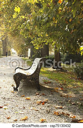outono, banco, ruela, parque, vazio, folhas, maple, strewn, outono, experiência. - csp75130432