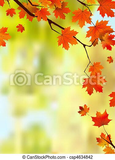 outono, borda, folhas, text., seu - csp4634842