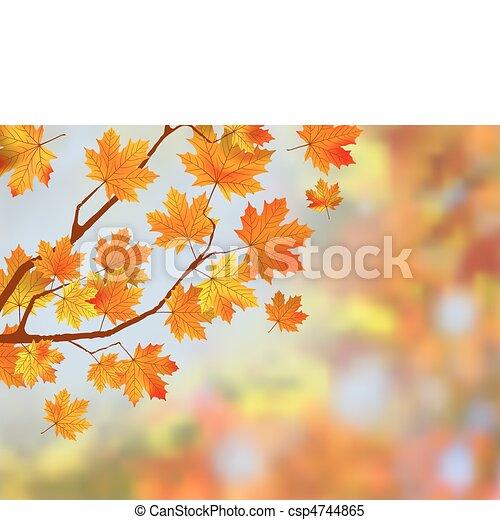 outono, experiência., folhas, coloridos - csp4744865