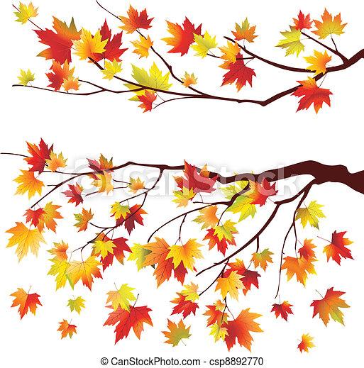 outono, filiais árvore, maple - csp8892770