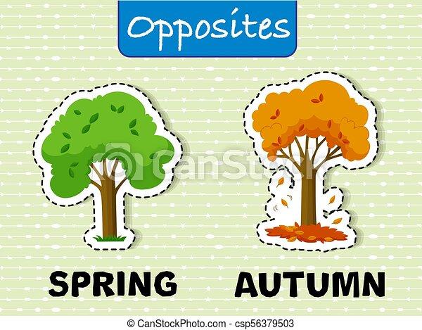 outono, primavera, palavras, oppesite - csp56379503