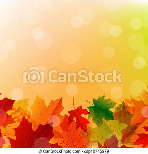 outono sai, arranjo - csp10745979