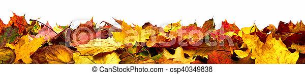 outono sai, bandeira, isolado - csp40349838