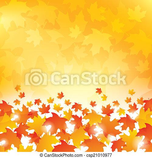 outono sai, fundo - csp21010977