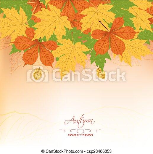 outono sai, fundo - csp28486853