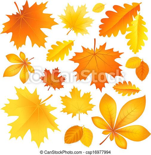 outono sai, jogo - csp16977994