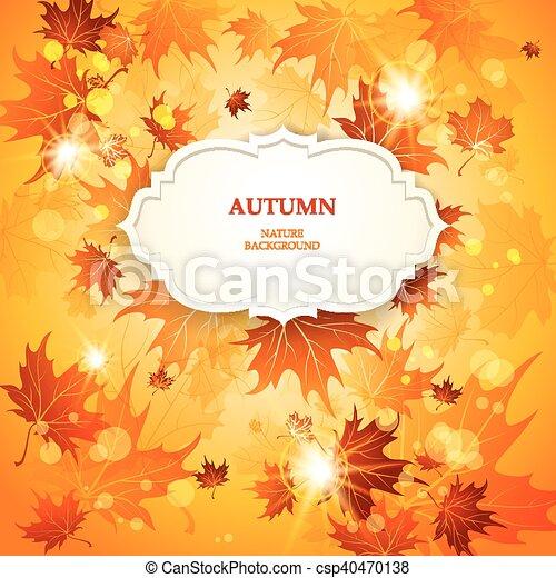 outono sai, luminoso, fundo, maple - csp40470138