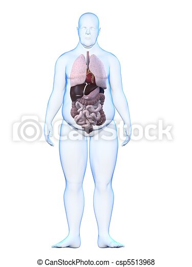 Overweight Man Anatomy 3d Rendered Illustration Of A Overweight