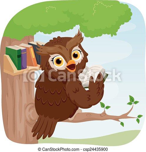 Owl Books - csp24435900