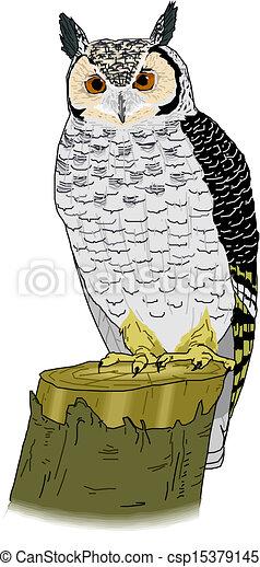 owl  - csp15379145