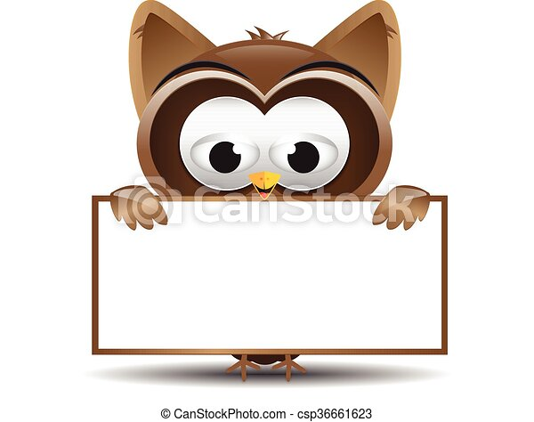 owl holding a text box cute cartoon owl holding blank text box