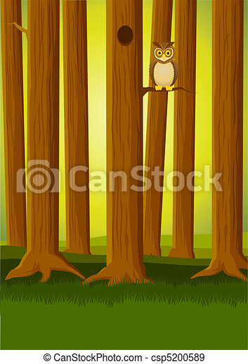 owl in the forest - csp5200589
