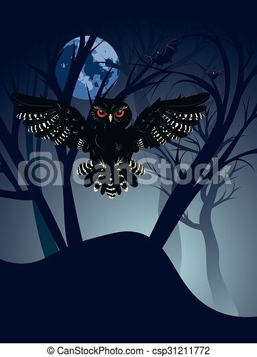 Owl in the Night Forest - csp31211772